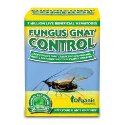 Organic Control Fungus Gnat Control