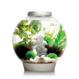 Oase biOrb CLASSIC 30 Aquarium