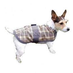 Intrepid Dog Blankets