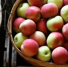 Locally Grown Apples