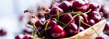 Farm Fresh Sweet Cherries available now!