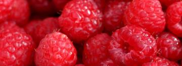 Sweet Locally Grown Raspberries are here!