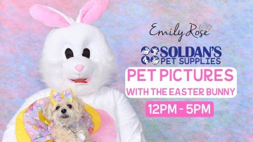 Pet Pictures With The Easter Bunny