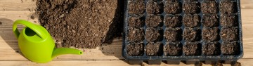 Time to Plant