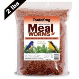 Tradeking 2lb Dried Mealworm Chicken Treat
