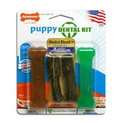 Puppy Dental Kit