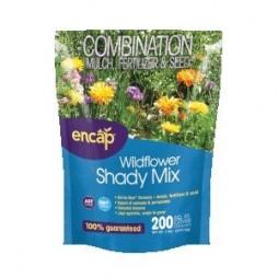 Wildflower Shady Mix
