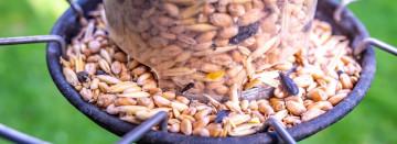AGWAY WILD BIRD FOOD & SEED MIX SALE