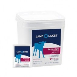 LAND O LAKES® Colostrum Replacement