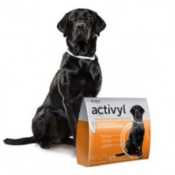 Activyl® Protector Band for Dogs