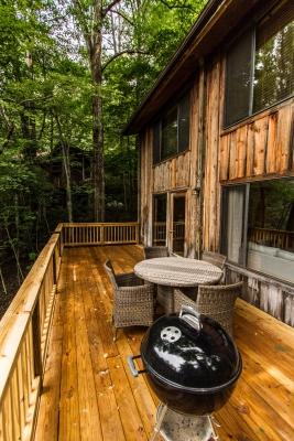 Chestnut cabin nantahala outdoor center for The cabins at nantahala