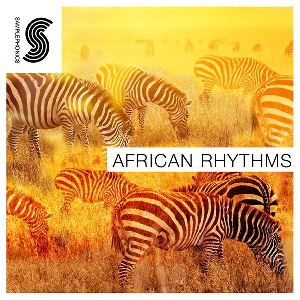 African rhythms 1000