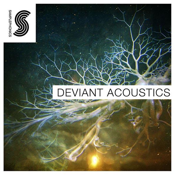 Deviant acoustics final 1000