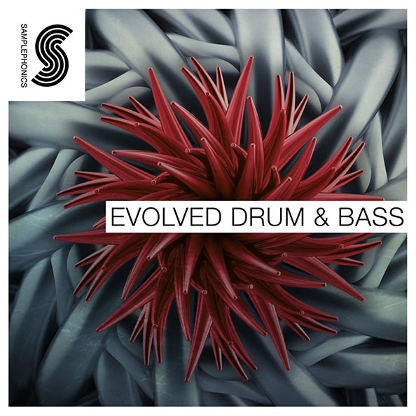 Evolved dnb email