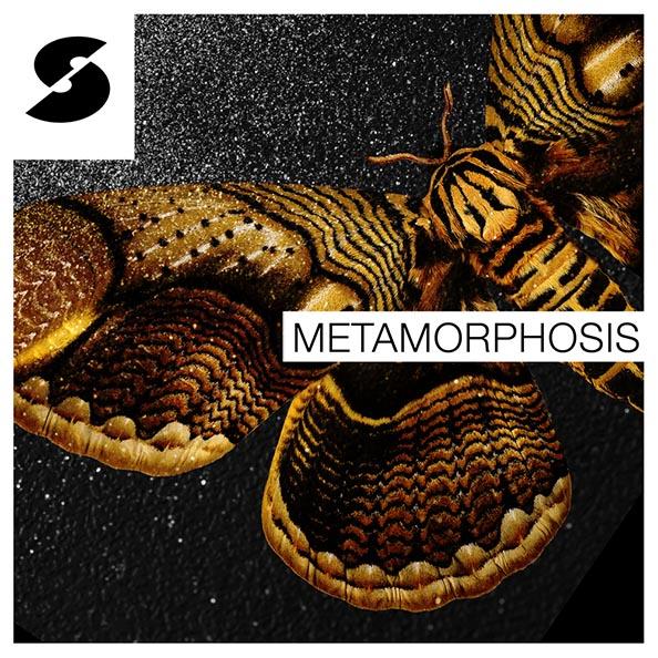 Metamorphosis 1000px