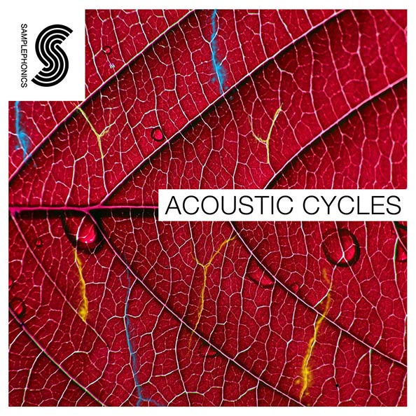 Mountain range acoustic cycles final