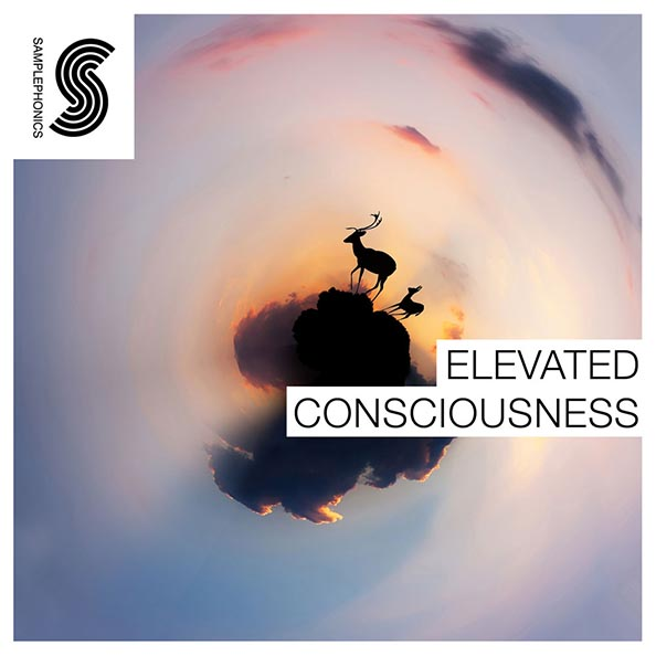 Elevated Consciousness