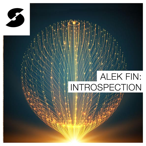 Alek Fin: Introspection