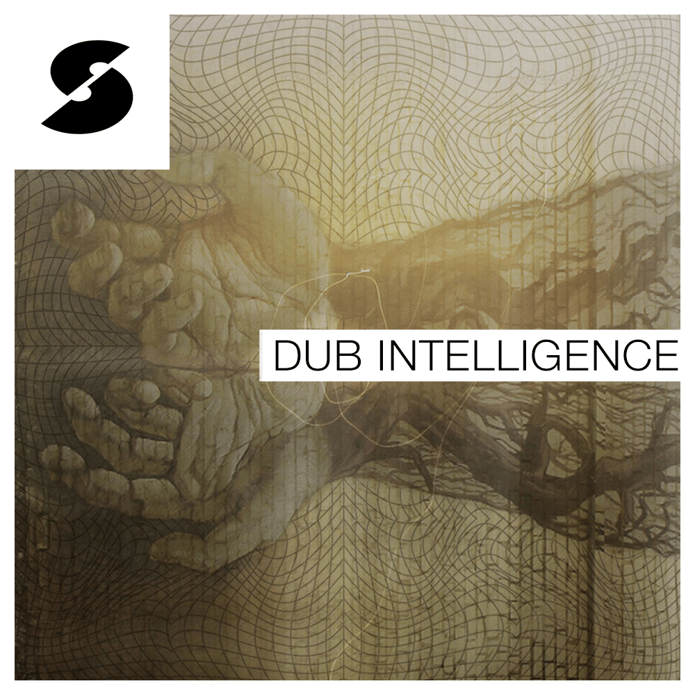 Ipman Presents: Dub Intelligence