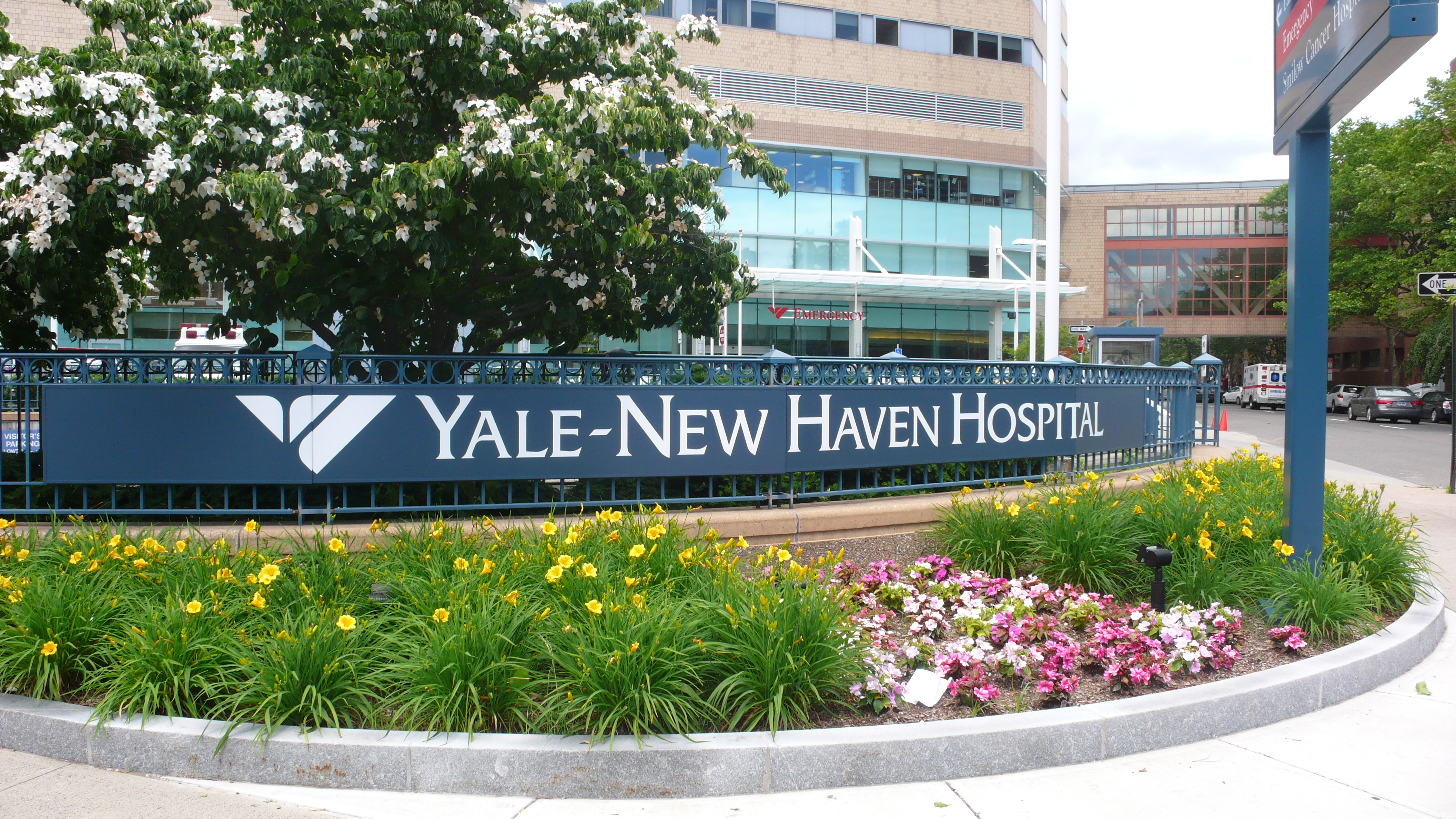 Geriatric Medicine Opportunity At Yale New Haven Hospital Nomad