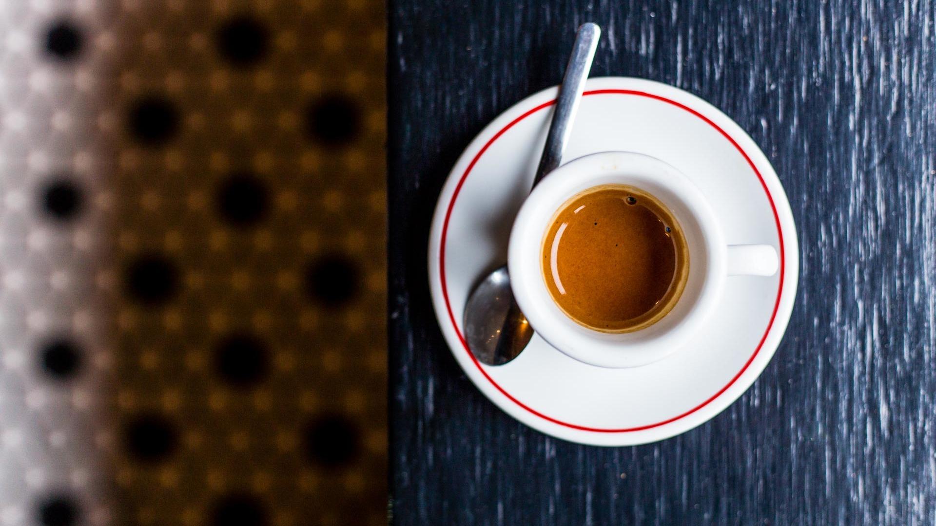 Caffe vita coffee roasting company 6