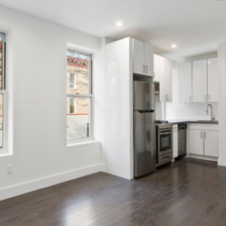 A $2,700.00, 3 bed / 1 bathroom apartment in PLG: Prospect Lefferts Gardens