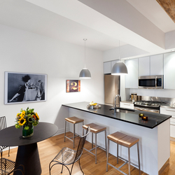 A $3,975.00, 1 bed / 1 bathroom apartment in DUMBO