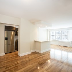 A $2,956.00, 0 bed / 1 bathroom apartment in Murray Hill