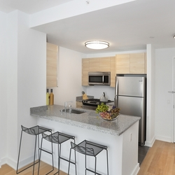 A $3,595.00, 1 bed / 1 bathroom apartment in Long Island City