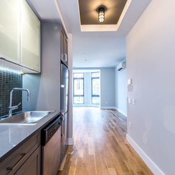 A $2,700.00, 1 bed / 1 bathroom apartment in Williamsburg