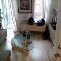 A $2,750.00, 1 bed / 1 bathroom apartment in Prospect Heights
