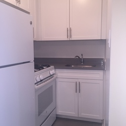 A $1,850.00, 1 bed / 1 bathroom apartment in Flushing