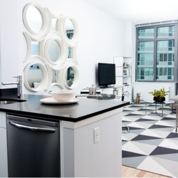 A $2,995.00, 1 bed / 1 bathroom apartment in Long Island City