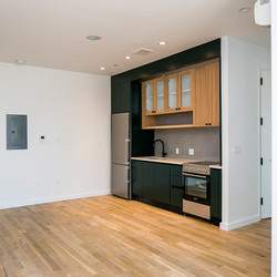 A $4,250.00, 3 bed / 1 bathroom apartment in Greenpoint