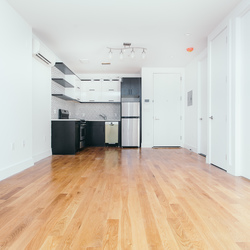 A $2,575.00, 1.5 bed / 1 bathroom apartment in Crown Heights