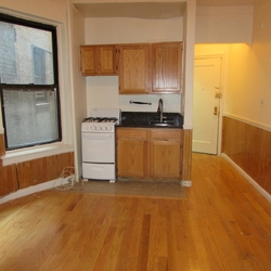 A $2,890.00, 1 bed / 1 bathroom apartment in Greenwich Village