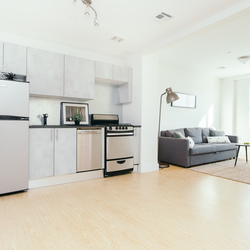 A $2,429.00, 2 bed / 1 bathroom apartment in Bed-Stuy