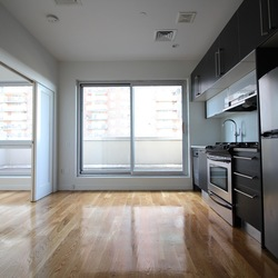 A $2,500.00, 1 bed / 1 bathroom apartment in Williamsburg