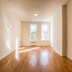 A $2,292.00, 1 bed / 1 bathroom apartment in Williamsburg