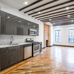 A $2,950.00, 2.5 bed / 1 bathroom apartment in Bed-Stuy