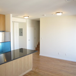 A $3,800.00, 2 bed / 2 bathroom apartment in Greenpoint