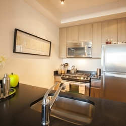 A $2,625.00, 0 bed / 1 bathroom apartment in Fort Greene