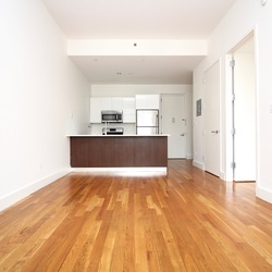 A $2,784.00, 1 bed / 1 bathroom apartment in Williamsburg