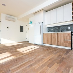 A $4,200.00, 3 bed / 1 bathroom apartment in Greenpoint