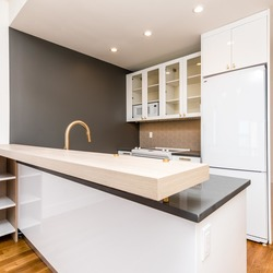 A $3,025.00, 1 bed / 1 bathroom apartment in Williamsburg