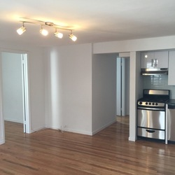 A $2,750.00, 2 bed / 2 bathroom apartment in Williamsburg