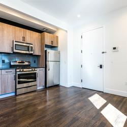 A $3,300.00, 3 bed / 2 bathroom apartment in Bushwick