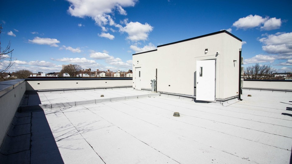 A $3,000.00, 3 bed / 1.5 bathroom apartment in PLG: Prospect Lefferts Gardens