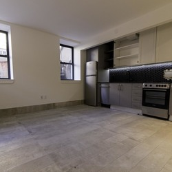A $2,450.00, 1 bed / 1 bathroom apartment in Greenpoint