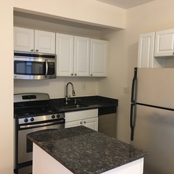 A $2,450.00, 1 bed / 1 bathroom apartment in Crown Heights